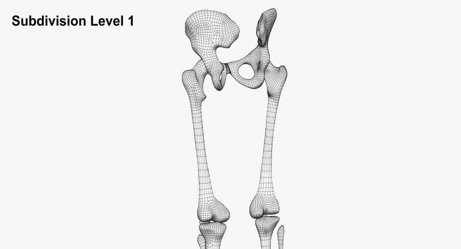 Leg skeleton royalty-free 3d model - Preview no. 12