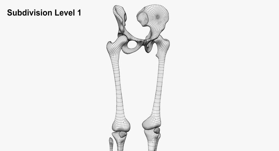 Leg skeleton royalty-free 3d model - Preview no. 10