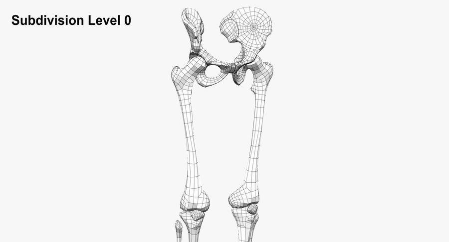 Leg skeleton royalty-free 3d model - Preview no. 9