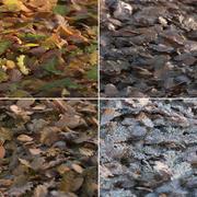 秋の葉の山 3d model