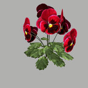 Flower 8 3d model