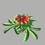 Flower 14 3d model