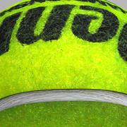Tennisball Penn 3d model