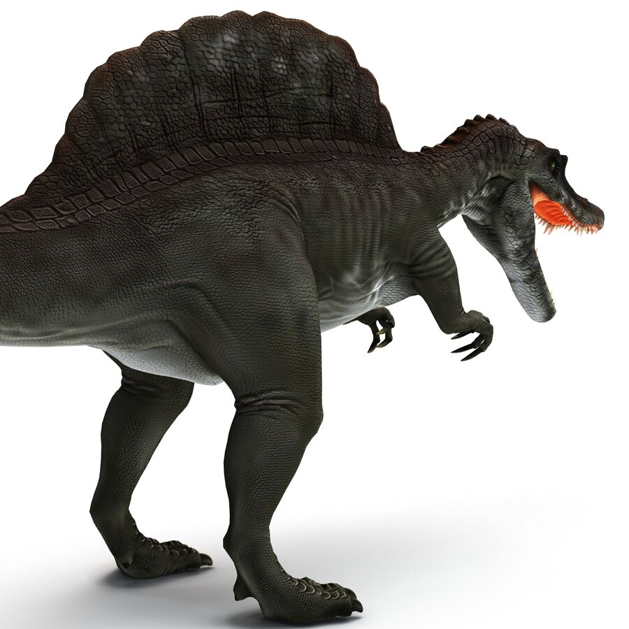 Spinosaurus Rigged royalty-free 3d model - Preview no. 5