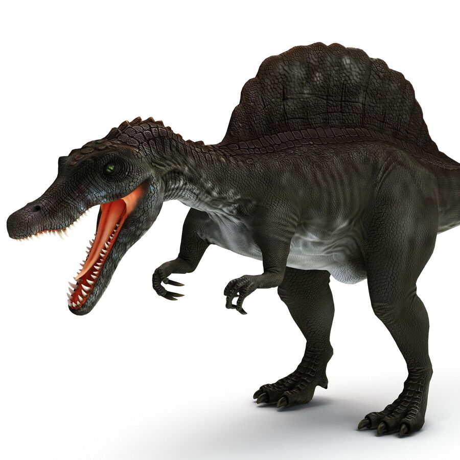 Spinosaurus Rigged royalty-free 3d model - Preview no. 4