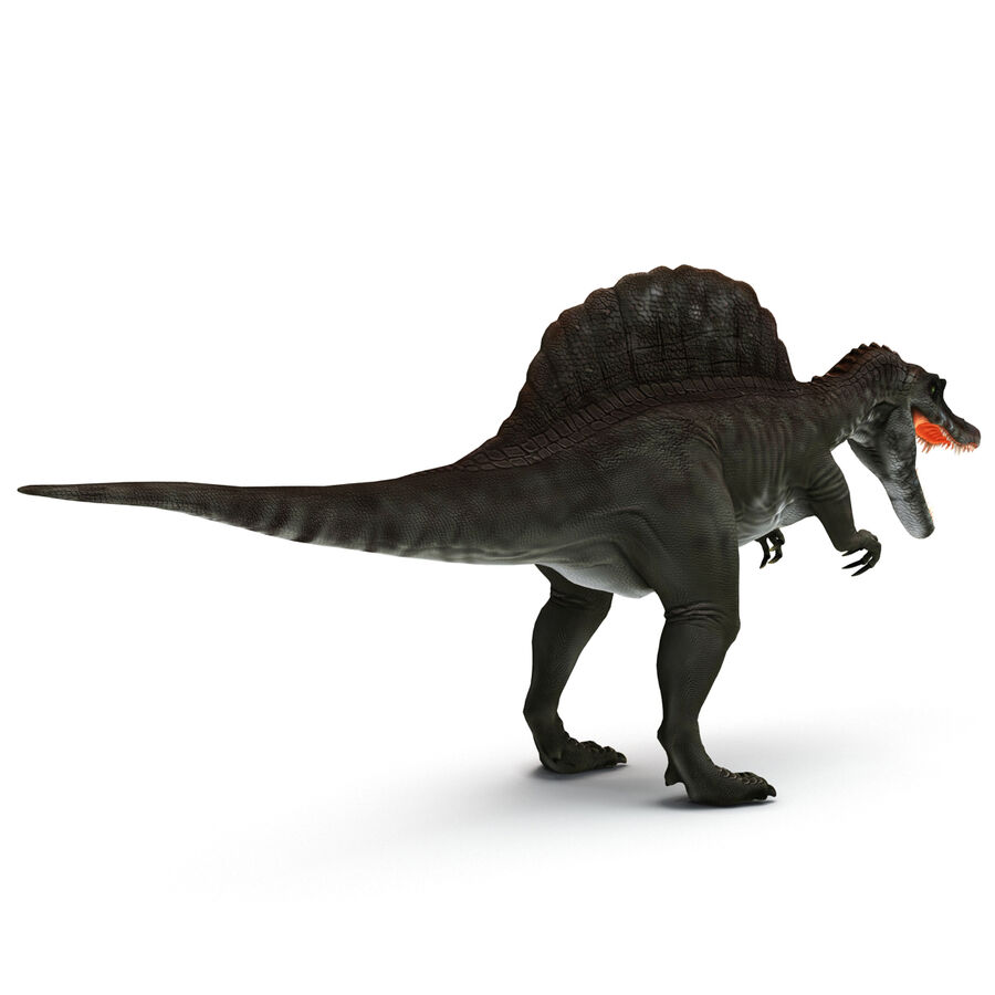 Spinosaurus Rigged royalty-free 3d model - Preview no. 24