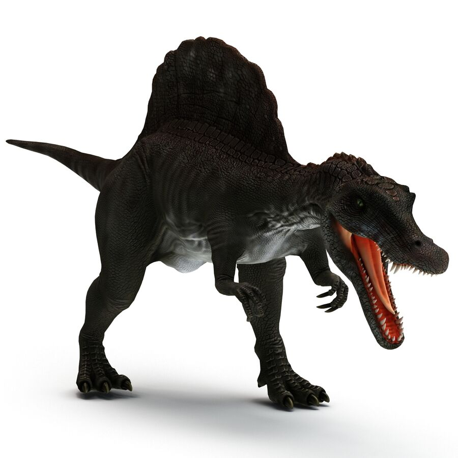 Spinosaurus Rigged royalty-free 3d model - Preview no. 17