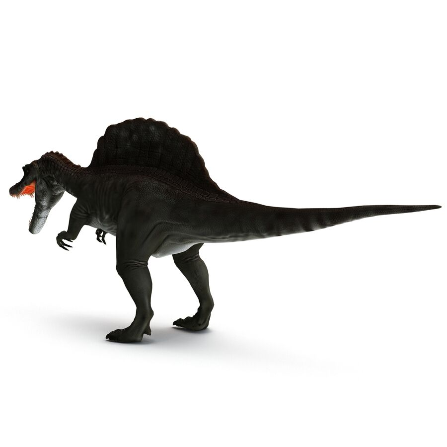 Spinosaurus Rigged royalty-free 3d model - Preview no. 23