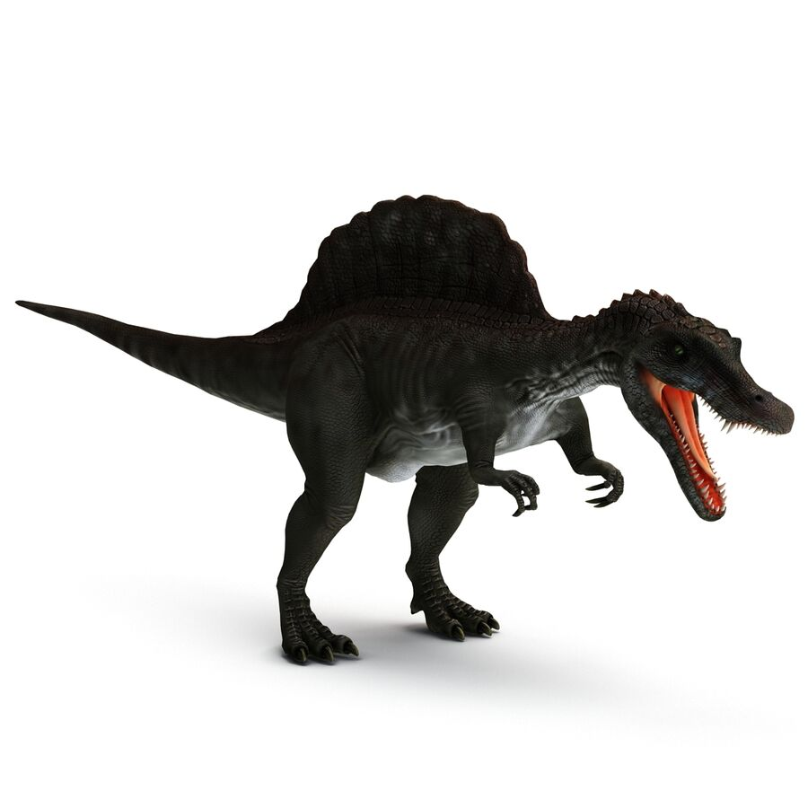 Spinosaurus Rigged royalty-free 3d model - Preview no. 22