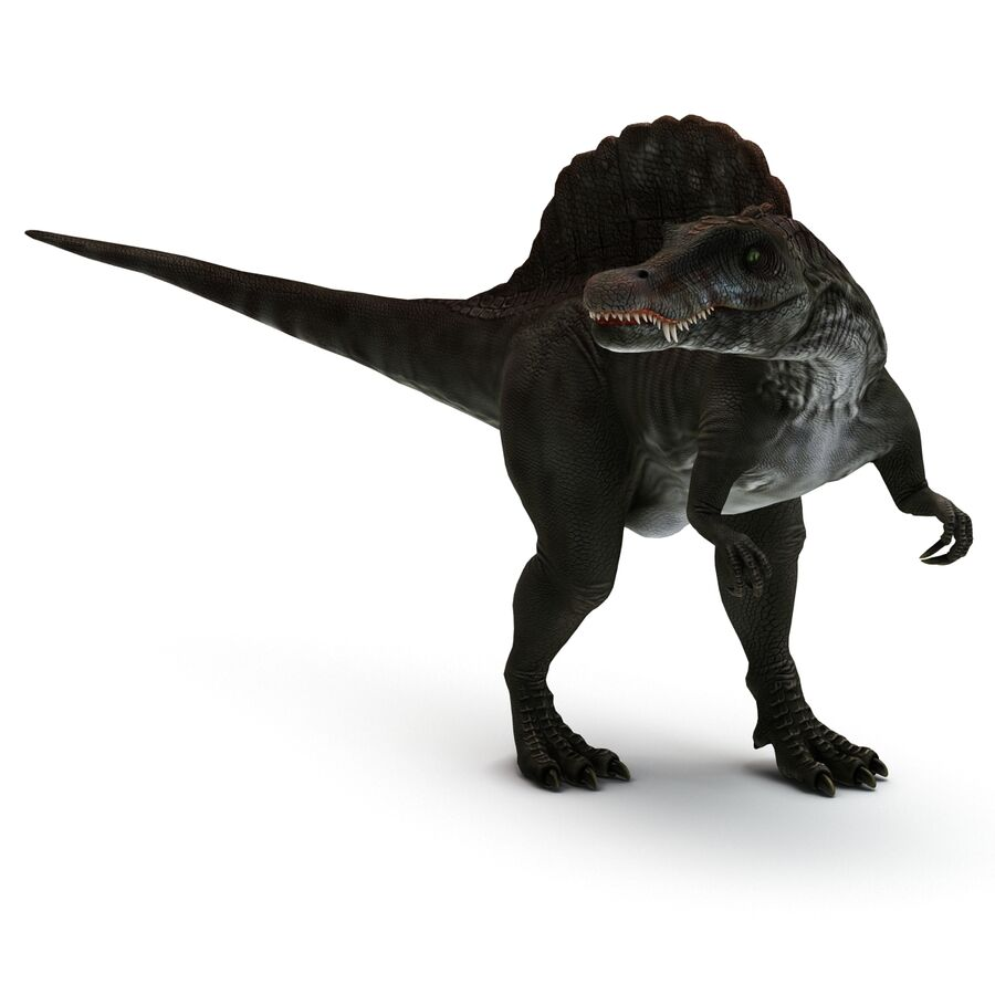 Spinosaurus Rigged royalty-free 3d model - Preview no. 16