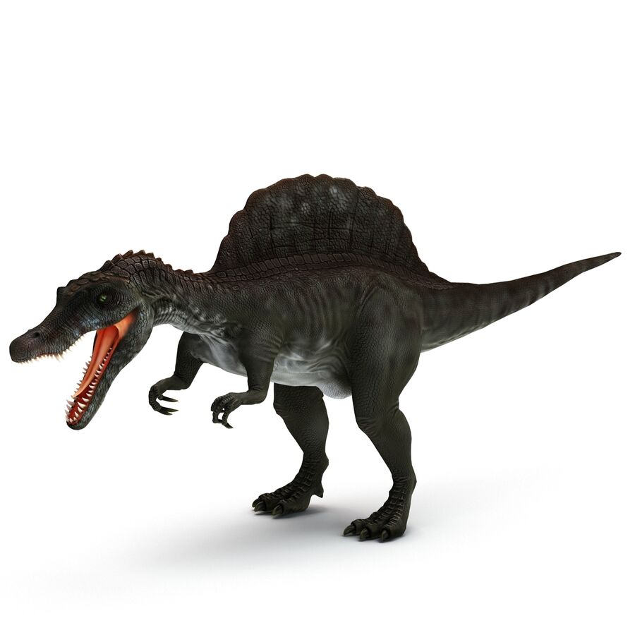 Spinosaurus Rigged royalty-free 3d model - Preview no. 21