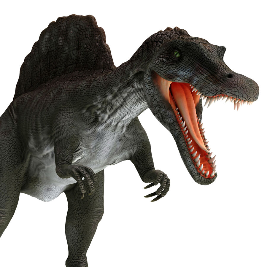 Spinosaurus Rigged royalty-free 3d model - Preview no. 8