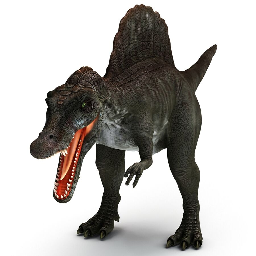 Spinosaurus Rigged royalty-free 3d model - Preview no. 18