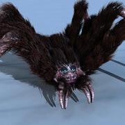 거미 3d model
