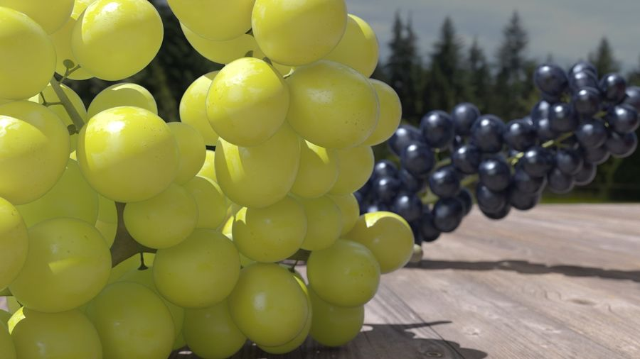 Realistic Grapes royalty-free 3d model - Preview no. 28