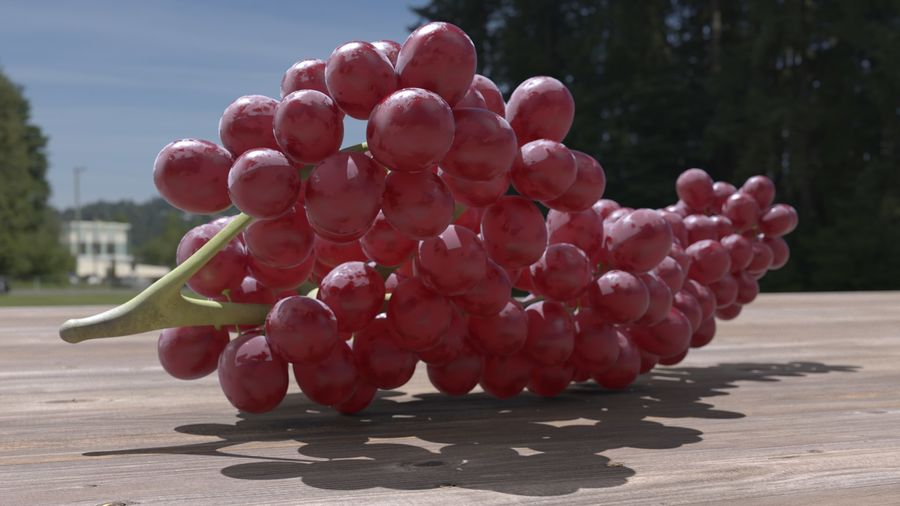 Realistic Grapes royalty-free 3d model - Preview no. 24