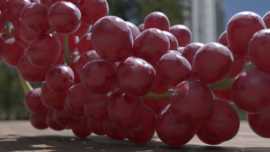 Realistic Grapes royalty-free 3d model - Preview no. 23