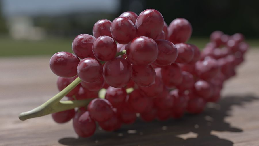 Realistic Grapes royalty-free 3d model - Preview no. 22