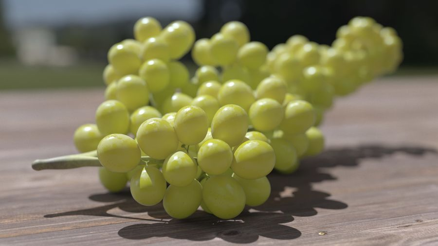 Realistic Grapes royalty-free 3d model - Preview no. 18