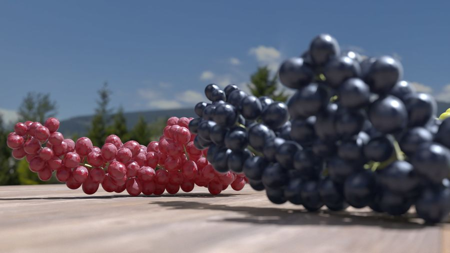 Realistic Grapes royalty-free 3d model - Preview no. 27