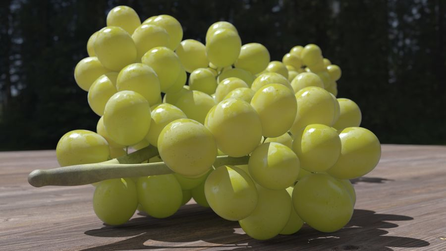 Realistic Grapes royalty-free 3d model - Preview no. 20