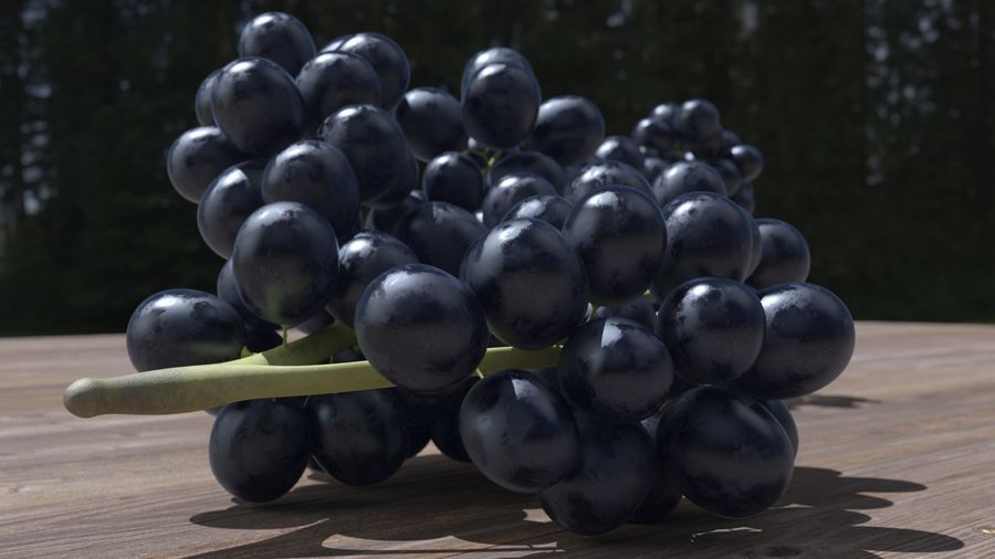 Realistic Grapes royalty-free 3d model - Preview no. 16