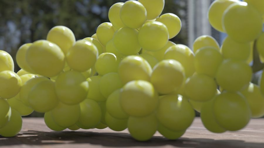 Realistic Grapes royalty-free 3d model - Preview no. 19