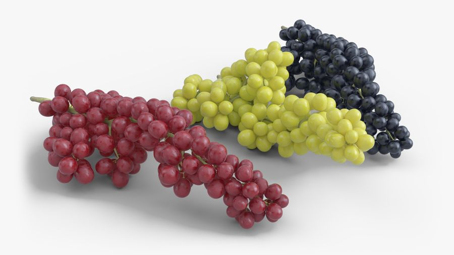 Realistic Grapes royalty-free 3d model - Preview no. 4