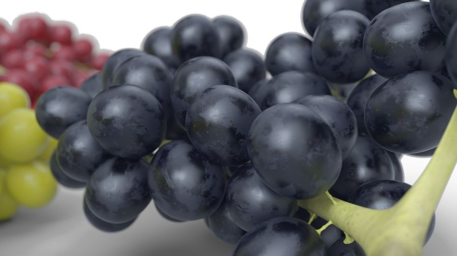 Realistic Grapes royalty-free 3d model - Preview no. 13