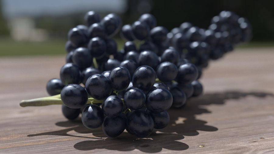 Realistic Grapes royalty-free 3d model - Preview no. 14