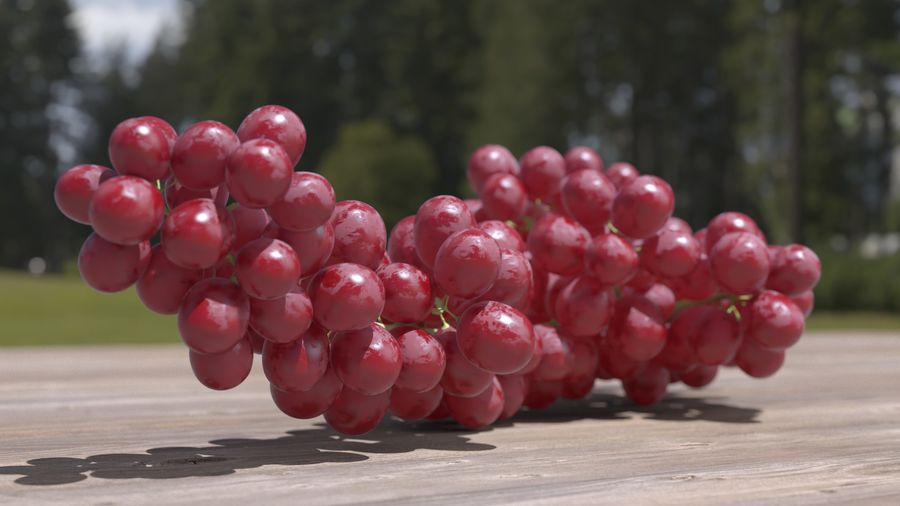 Realistic Grapes royalty-free 3d model - Preview no. 25