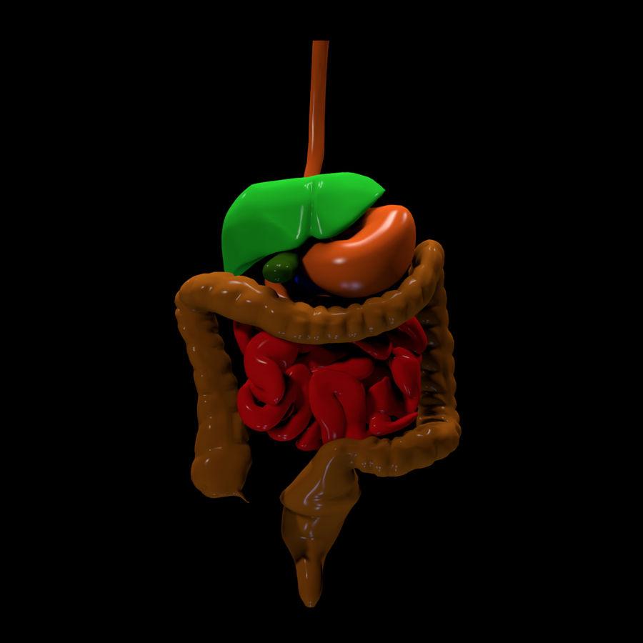 Цвет пищеварительной системы royalty-free 3d model - Preview no. 4