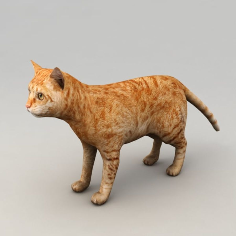 Red cat rigged model royalty-free 3d model - Preview no. 2