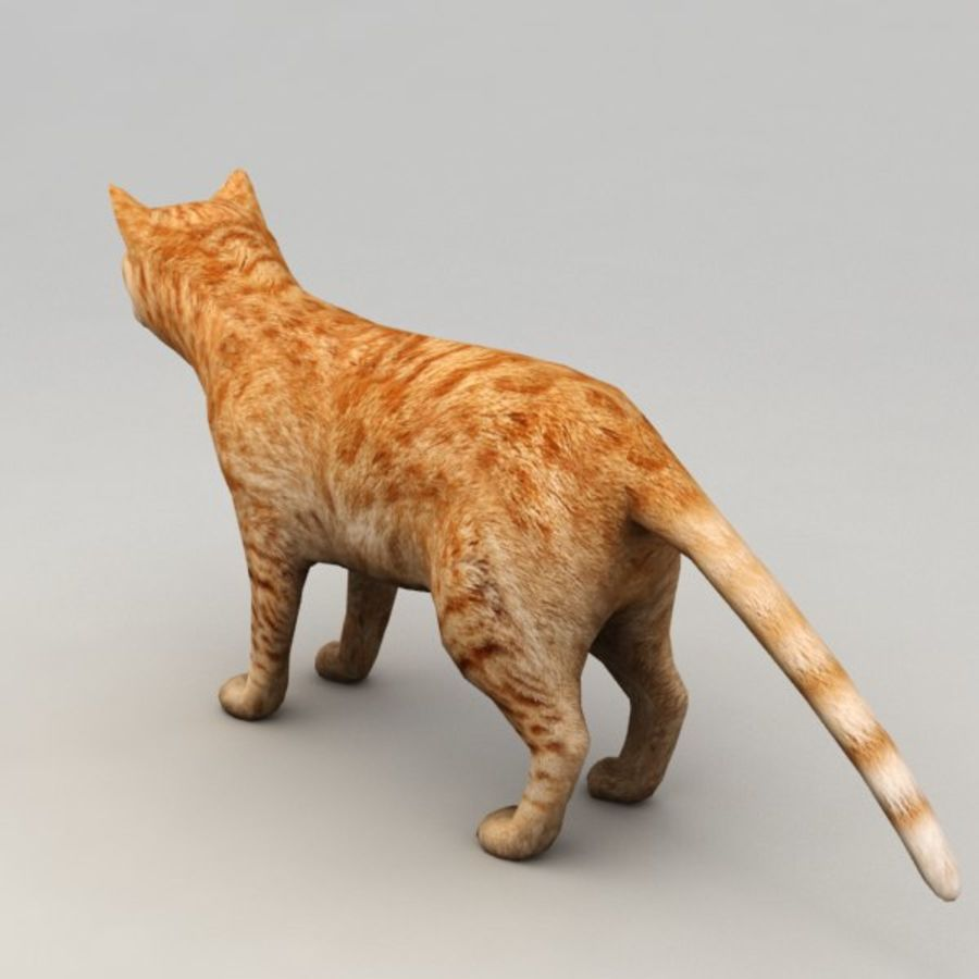 Red cat rigged model royalty-free 3d model - Preview no. 3