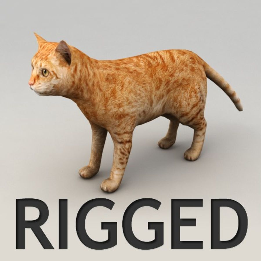 Red cat rigged model royalty-free 3d model - Preview no. 1