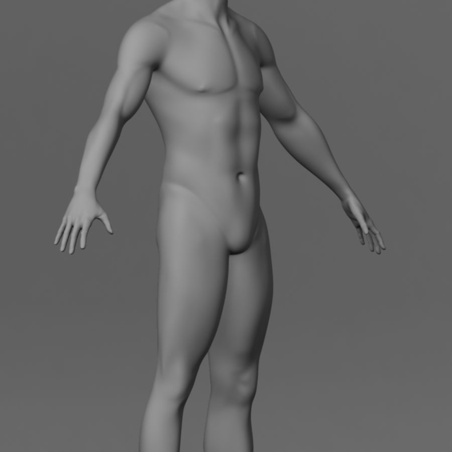 Human Male Base Mesh royalty-free 3d model - Preview no. 3