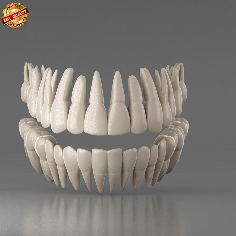 Ludzkie zęby royalty-free 3d model - Preview no. 3