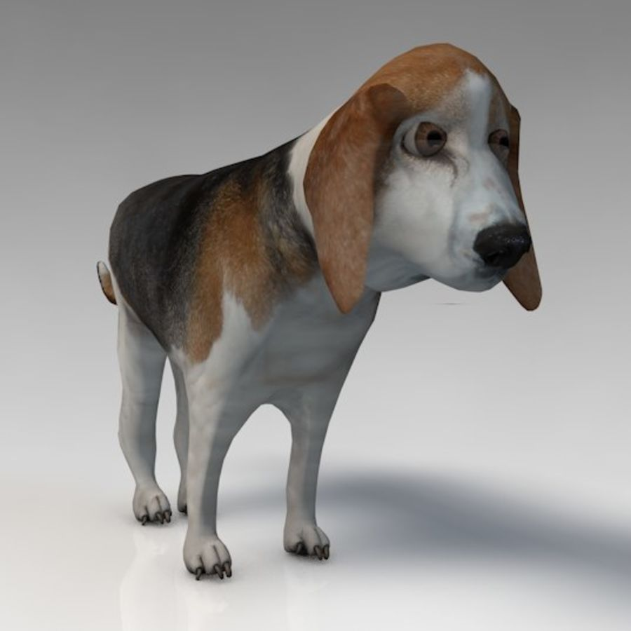 Hond royalty-free 3d model - Preview no. 3
