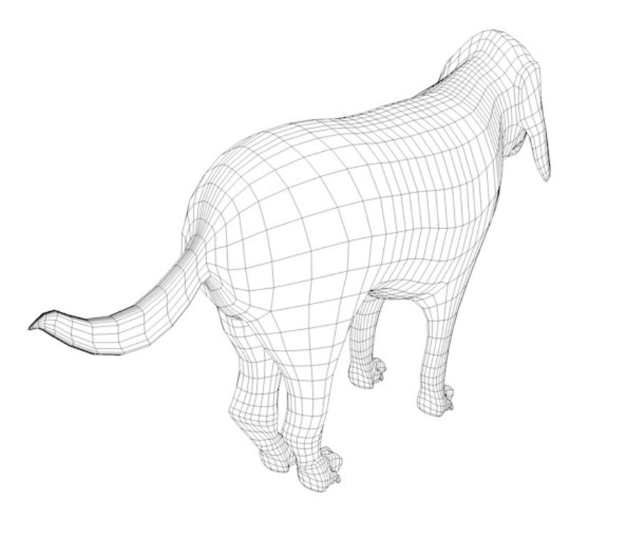 Hond royalty-free 3d model - Preview no. 6