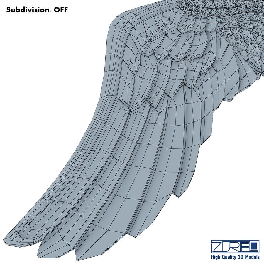 金鹰 royalty-free 3d model - Preview no. 14