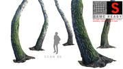 Birch-Tree 3d model