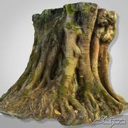 Tropical Tree 3D Scan 3d model