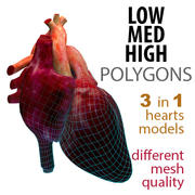 Heart LOW-MED-HIG polygons 3d model