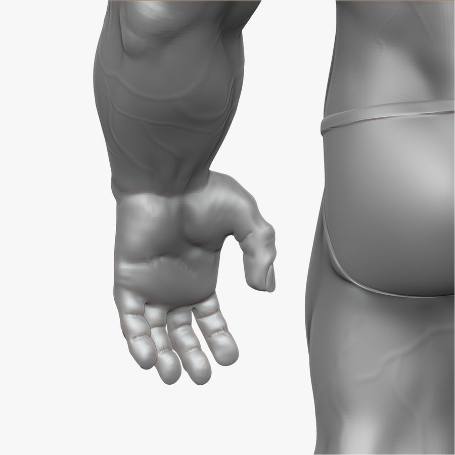 Muscular Man 2 Zbrush Sculpt  (UVed) royalty-free 3d model - Preview no. 23