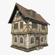 Fantasy House 01 3d model
