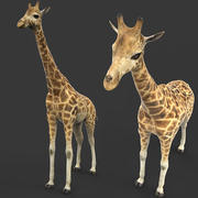 żyrafa 3d model
