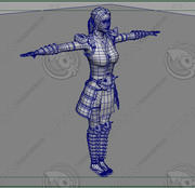 The woman warrior 3d model