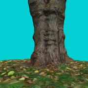 Tree Stump 7 3d model