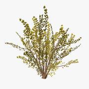 plant_15 3d model