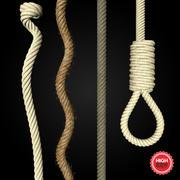 Las cuerdas modelo 3d